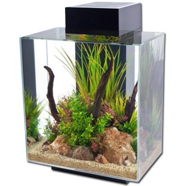 Fluval edge 46l led aquarium black gloss for Fluval edge fish tank