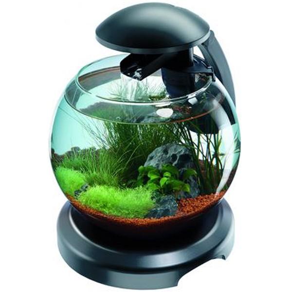 tetra cascade globe aquarium 6 8ltr