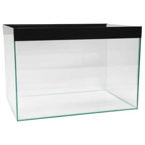 All Glass Tank 18x10x10 Single