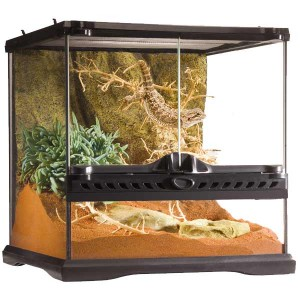 Exo Terra Natural Terrarium Mini Wide 30x30x30cm