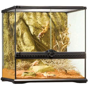 Exo Terra Natural Terrarium Small Wide 45x45x45cm