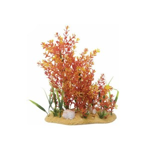 11in Orange/red Plant And Base