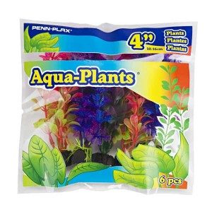4in Coloured Plants Assorted