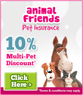Animal Friends - Pet Insurance