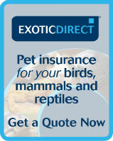 Exotic Direct - Pet Insurance for birds, mammals and reptiles