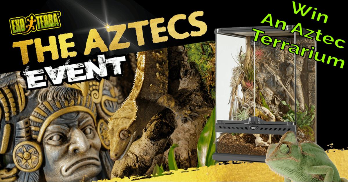 Aztec Win