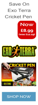 Exo Terra Cricket Pen